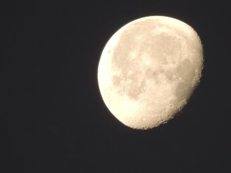 Moon Oman