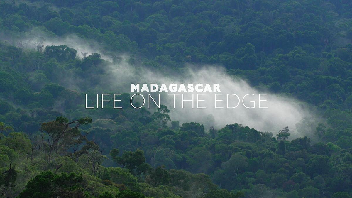 Madagascar: Life On The Edge 'Taster'